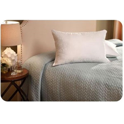 "Picture of Denver Mattress  20"" X 28"" X 5"" Soft Jumbo Pillow 343490 03-1076"