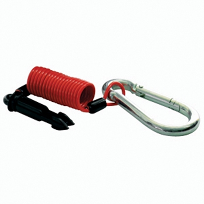 Picture of Fastway Zip 6' Breakaway Cable & Pin for All Zip r Switches 80-01-2206 17-0181
