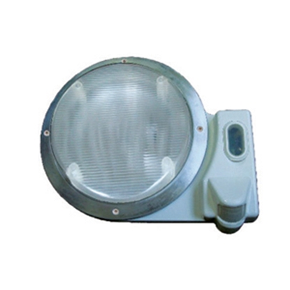 Picture of Starlights  White Round Porch Light 016-SL2000 18-0002