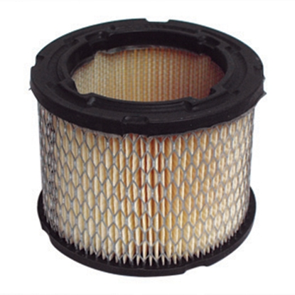 Picture of Cummins Onan  Emerald/Marquis Air Filter 140-0495 48-2020