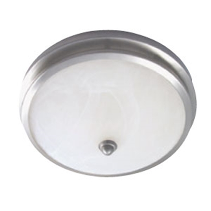 Picture of Gustafson  Satin Nickel Ceiling Mount Interior Light 55AM556XYZ15 69-5173