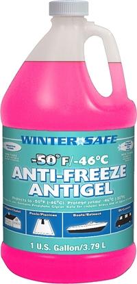 Picture of Star Brite 31200 13-1640 Anti-Freeze 1 Gallon Jug